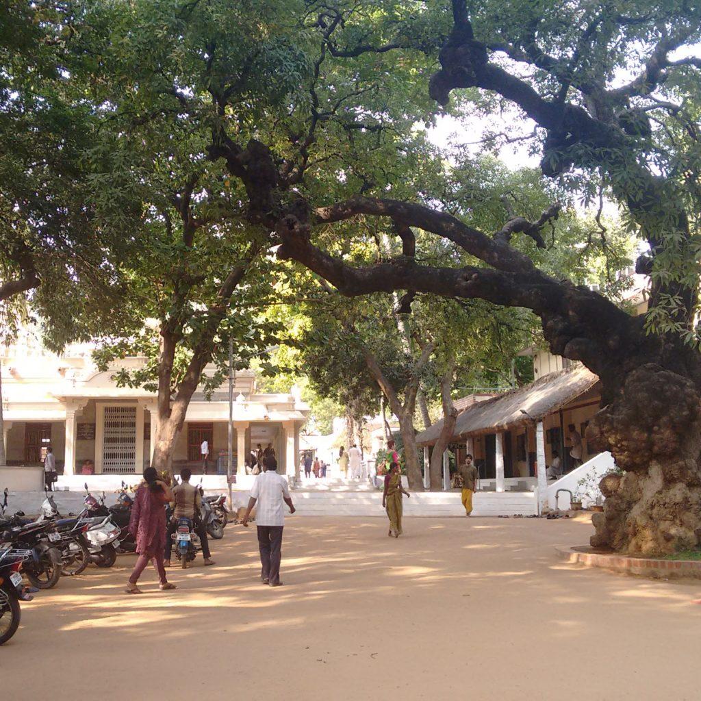 ramanaashram